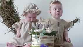 Именниный пирог, славные маленькие девочки в платьях сидя на photoshoot в студии на предпосылке стены с оформлением акции видеоматериалы