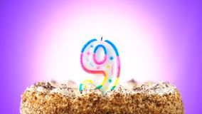 Именниный пирог с горящей свечой дня рождения 9 Предпосылка изменяет цвет сток-видео
