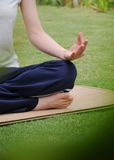 иметь йогу женщины Стоковое Фото