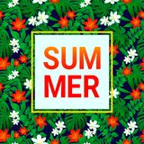 имеющееся лето архива eps карточки Троповая предпосылка Экзотические листья, цветки с простым текстом Дизайн вектора с рамкой Пок бесплатная иллюстрация