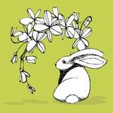 имеющееся приветствие архива пасхи eps карточки Милые кролики с цветками пасхи вручают иллюстрацию притяжки Дизайн открыток иллюс иллюстрация вектора