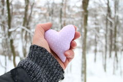 имеющийся вектор valentines архива дня карточки Вручите держать сердце на предпосылке леса зимы Стоковое Фото