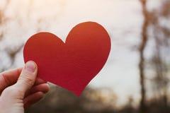 имеющийся вектор valentines архива дня карточки Стоковые Фотографии RF