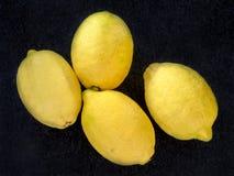 4 лимона на темной серой предпосылке Стоковое Изображение