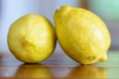 лимоны 2 Стоковая Фотография