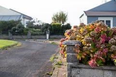 имущество принципиальной схемы реальное Выполненный на заказ роскошный дом на лете, падении, сезоне осени, времени с славно благо Стоковая Фотография RF