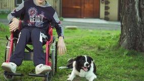 Инвалид играет с собакой, терапией canitis, обработкой инвалидности через тренировку с собакой, человека в a акции видеоматериалы