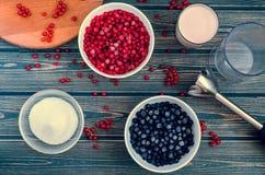 Ингридиенты для варить смородину smoothie Стоковые Фотографии RF