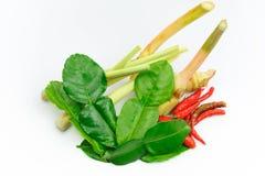 ингридиенты еды тайские Стоковые Фотографии RF