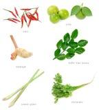 ингридиенты еды тайские Стоковое Изображение