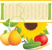 ингридиенты еды Стоковое Изображение RF