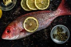 Ингридиенты красного люциана и рецепта Стоковое Фото