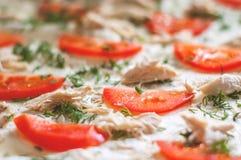 Ингридиенты пиццы крупный план Томаты, цыпленок, сыр, укроп Стоковое Изображение