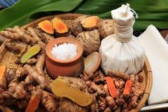 Ингридиент трав для преодоления автоматического действия медицина бака соли тайская традиционная стоковые изображения