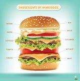 Ингридиенты гамбургера Infographics вектора стоковые фотографии rf