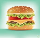 Ингридиенты гамбургера Infographics вектора стоковое фото