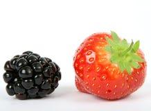 Ингридиенты, ежевика и клубника фруктового салата лета стоковое фото