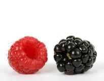 Ингридиенты, ежевика и поленика фруктового салата лета стоковая фотография rf