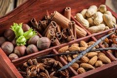 Ингридиенты и гайки для шоколада Стоковое фото RF