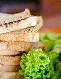 Ингридиенты сандвича Стоковые Изображения