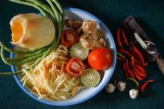Ингридиенты установили салата папапайи или животика сома в тайском имени стоковое изображение rf