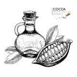 Ингридиенты ухода за волосами вектора установленные Органической элементы нарисованные рукой Фасоль какао, бутылка масла, выходит Стоковое фото RF