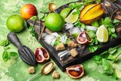 Ингридиенты цитрусовых фруктов для питья вытрезвителя здорового Стоковая Фотография