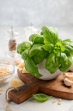 Ингридиенты для делать зеленый соус песто итальянка еды здоровая Стоковое Изображение RF