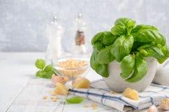 Ингридиенты для делать зеленый соус песто итальянка еды здоровая Стоковые Изображения