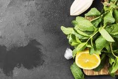 Ингридиенты для лимонада - лимона, мяты, льда на деревянной разделочной доске на темной предпосылке Взгляд сверху, космос экземпл Стоковое Изображение RF