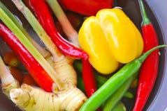 Ингридиенты для тайской кухни стоковые изображения rf
