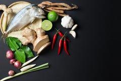 Ингридиент супа Тома Yum пряного с испаренной кухней еды рыб скумбрии традиционной тайской Стоковые Фото