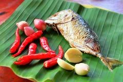 Ингридиент для затира Mackerell пряного, тайской еды на лист банана Стоковые Изображения RF