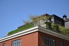 Индивидуальная зеленая рекреационная зона на крыше многоэтажного здания стоковая фотография rf