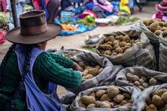 Индигенная женщина продавая разные виды картошек стоковое изображение rf