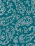 индийская картина paisley Стоковое фото RF