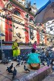 Индийская семья окруженная с голубями 2 близрасположенных поставщика готовы продать их еда голубя стоковое фото
