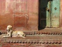 Индийские двери и окна Фасад Белого Дома глубинная вытяжка компаса предпосылки зодчества голубая сверх сбор винограда бумаги орна стоковые фотографии rf