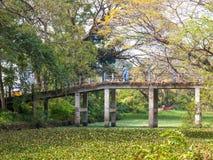 Индийский крест человека мост в середине подпоров, Alappuzha, Krala, Индия Стоковое Фото