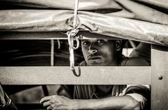 Индийский рабочий-строитель смотрит в камеру стоковая фотография