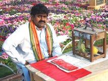 Индийский рассказчик удачи Стоковое Фото