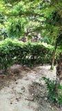 Индийский сад и индийские люди стоковые изображения rf