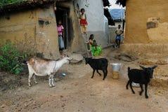 индийский уклад жизни Стоковая Фотография RF