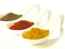 Индийский condiment стоковое фото rf