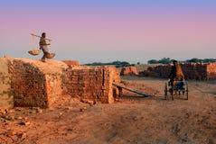 Индийское поле кирпича Стоковые Изображения