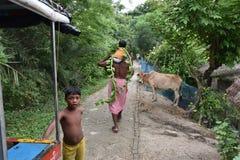 индийское село жизни Стоковое фото RF