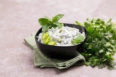 Индийское raita огурца с югуртом, мятой, cilantro Греческое tzatzi Стоковые Изображения