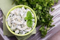 Индийское raita огурца с югуртом, мятой, cilantro Греческое tzatzi Стоковые Фото