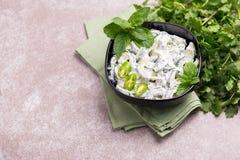 Индийское raita огурца с югуртом, мятой, cilantro Греческое tzatzi Стоковое фото RF