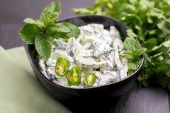 Индийское raita огурца с югуртом, мятой, cilantro Греческое tzatzi Стоковые Изображения RF